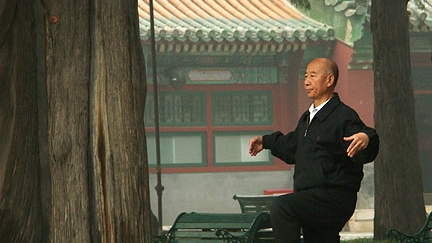 TAI CHI + CHAI TEA Wake up with a warm and spicy cup of Chai Tea and learn from our friends at Southern Grove Chinese Community Centre how your own movements can form your inner calm. Grounded Den 09:00 - 10:00 (Sunday morning) booking available when you purchase 24-hour ticket