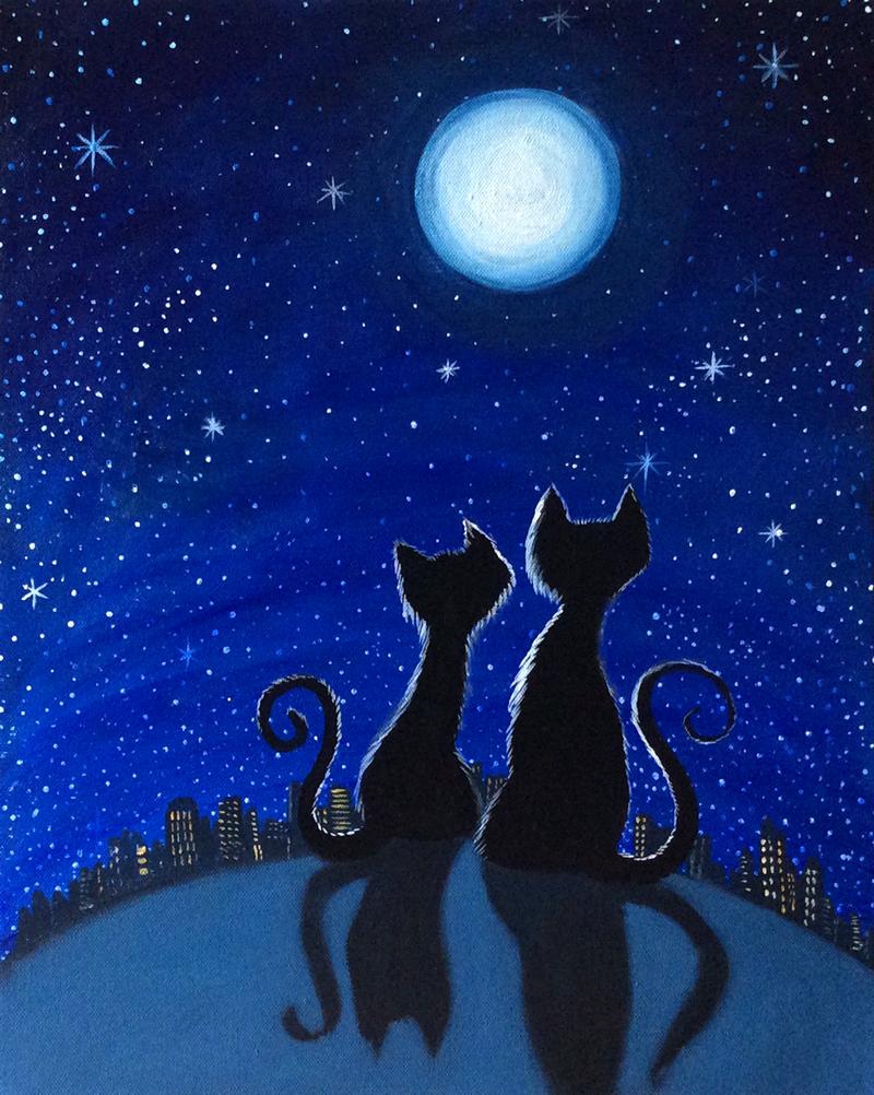 Stargazing Kitties