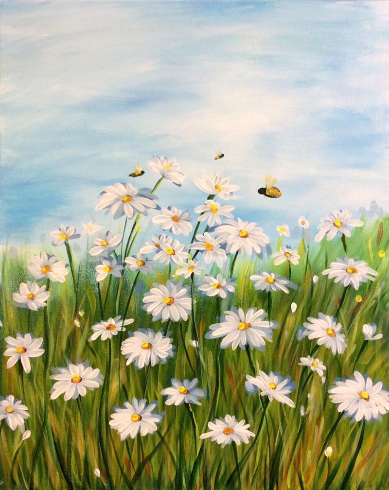 Daisies & Bumblebees
