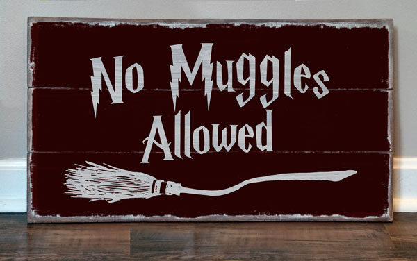 No Muggles Allowed