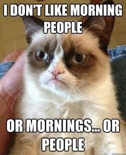 "When I think of ""viral"" content, I immediately think of grumpy cat memes (sorry)."