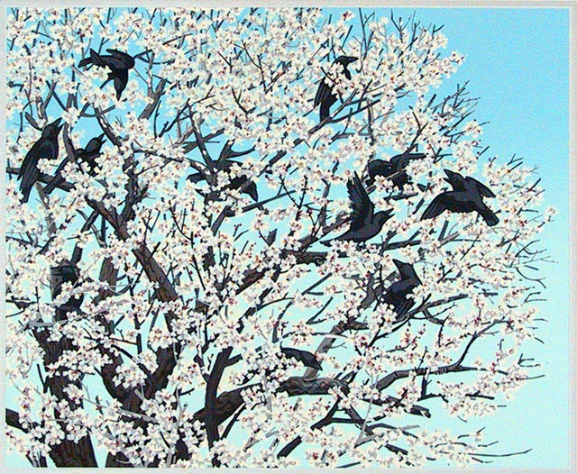 Flowering Apricot and Crows