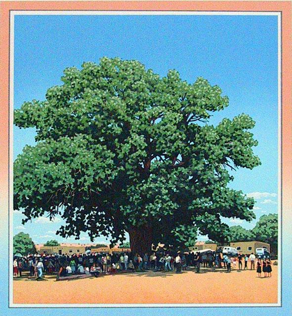 Cottonwood at San Ildefonso Pueblo