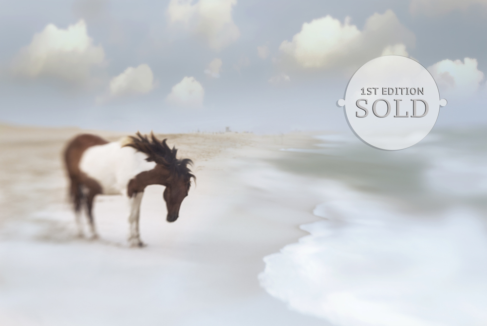 AssateaqueDream1_SOLD.jpg