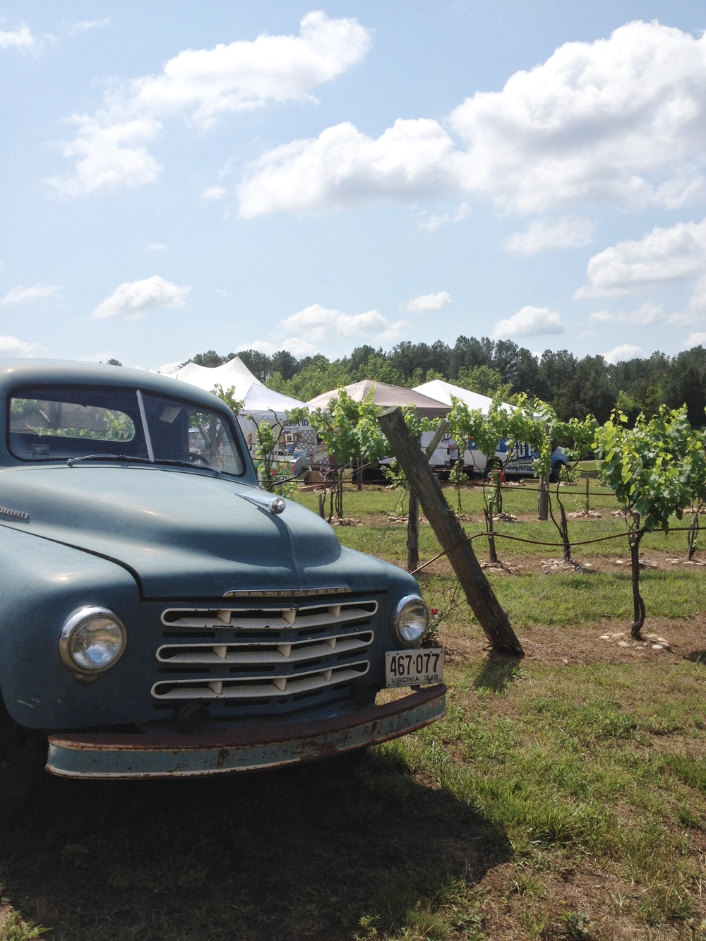 Antique car and vineyard.JPG