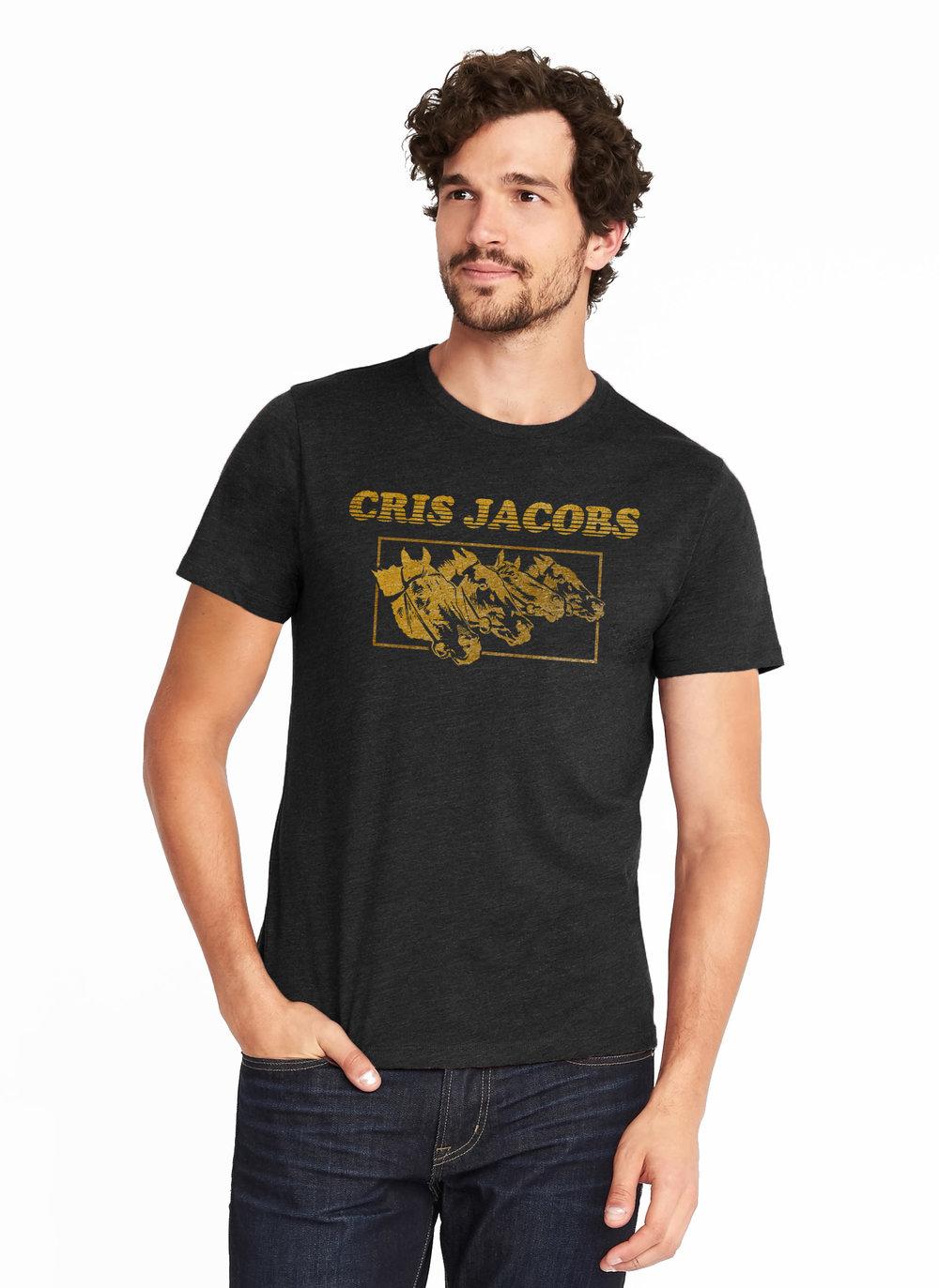 cris-jacobs-horses-model.jpg