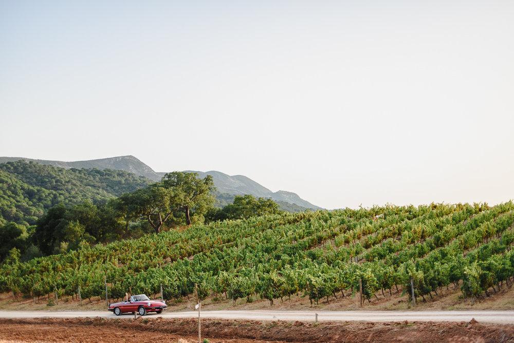 red-alfa-romeo-spider-wedding-vineyards-azeitao-portugal.jpg