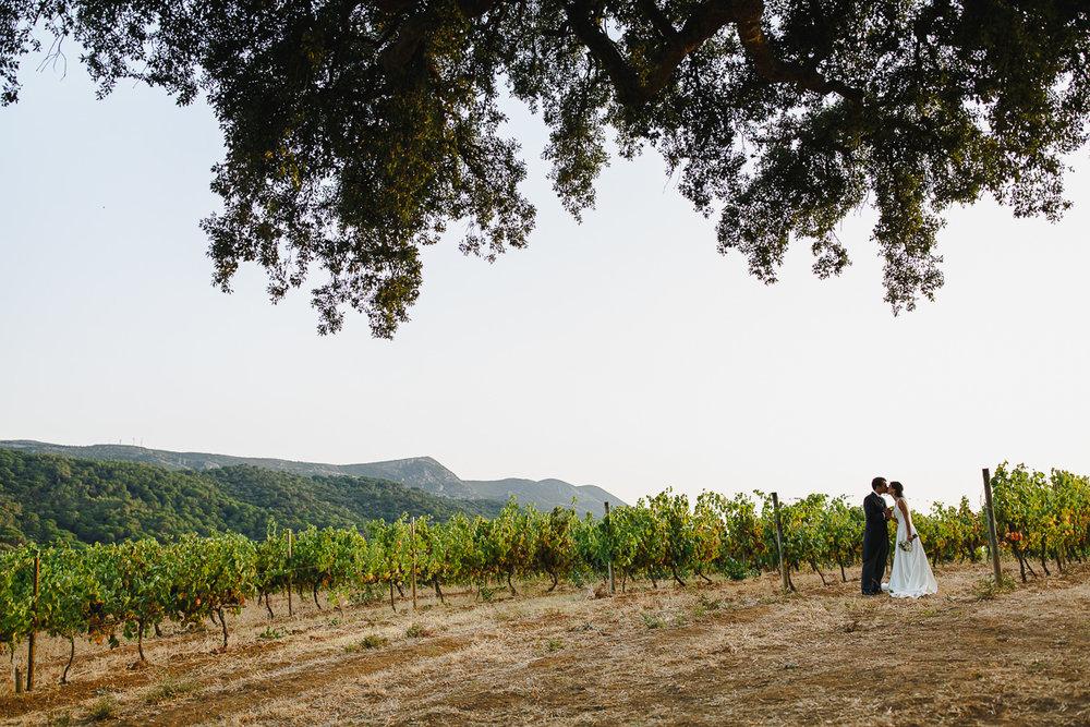 vineyard-wedding-azeitao-setubal-portugal.jpg