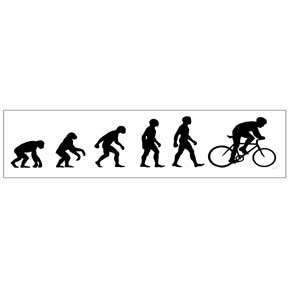 Bike-Evolution-Sticker-(5115).jpg