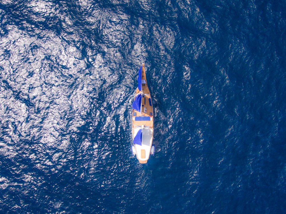 Ocean-Pure-top-sailing-view.jpg