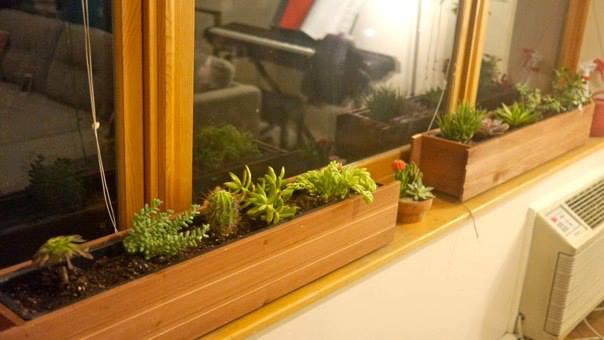 our succulent planters!