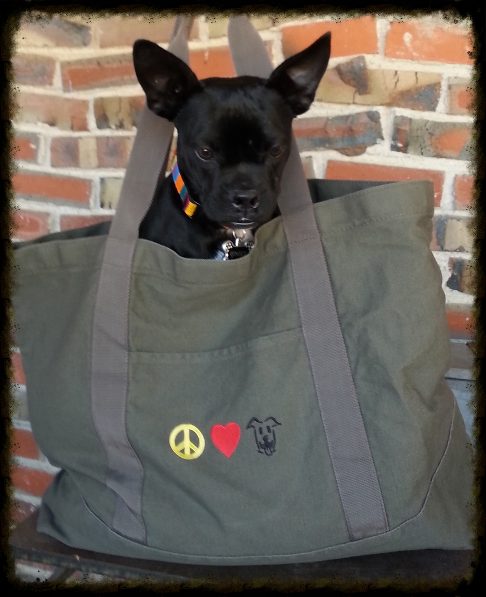 Perfect bag for haulin' your stuff around! Embroidered Canvas bags: Pick the right bag for you!  Totes, Messenger bags, Backpacks.   (adorable little dog not included...sorry!)