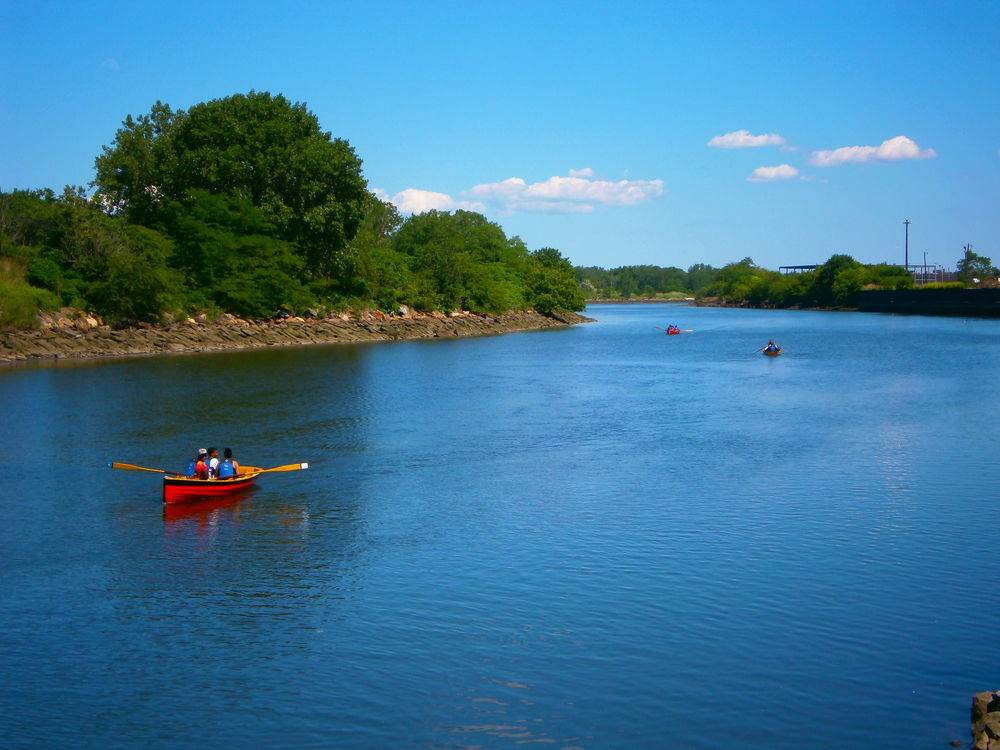 Paddling the Bronx River