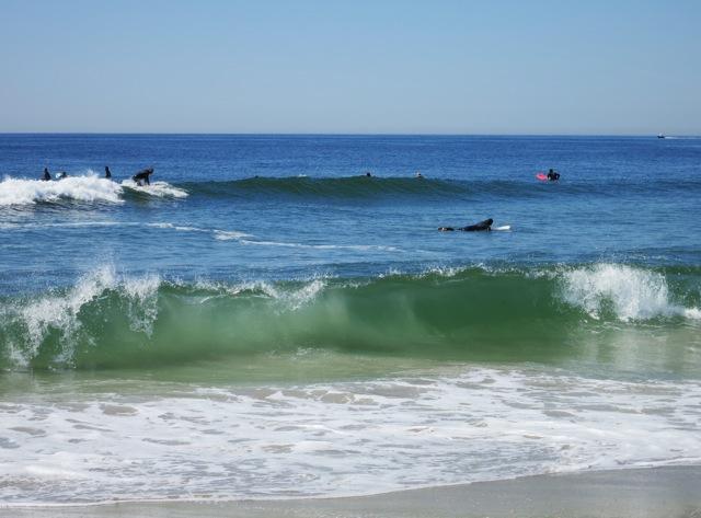 Surfing1.jpeg