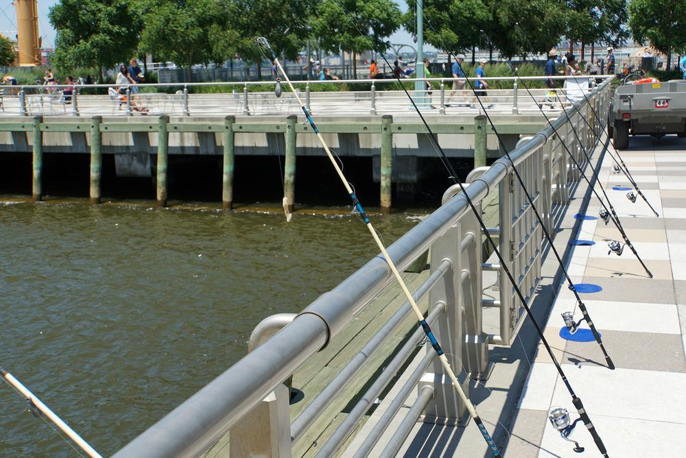 DSC01885 Outdoorfest June 2014 Fishing Hudson River.jpg