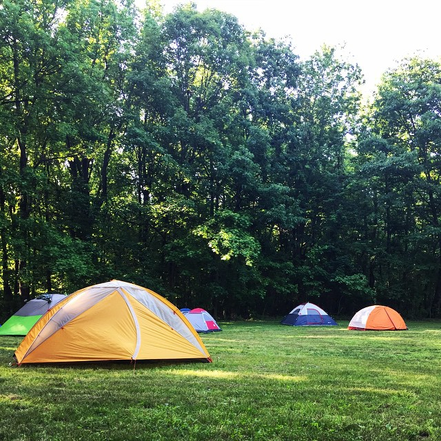 Morning_sunshine_with__outdoorfest____OFNYC15__TripPixApp_by_ali_bradley.jpg