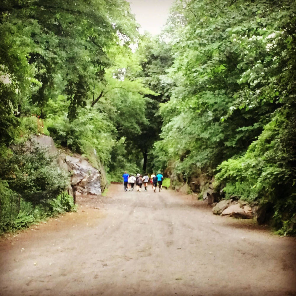 Runners heading into the North Woods during OutdoorFest 2015