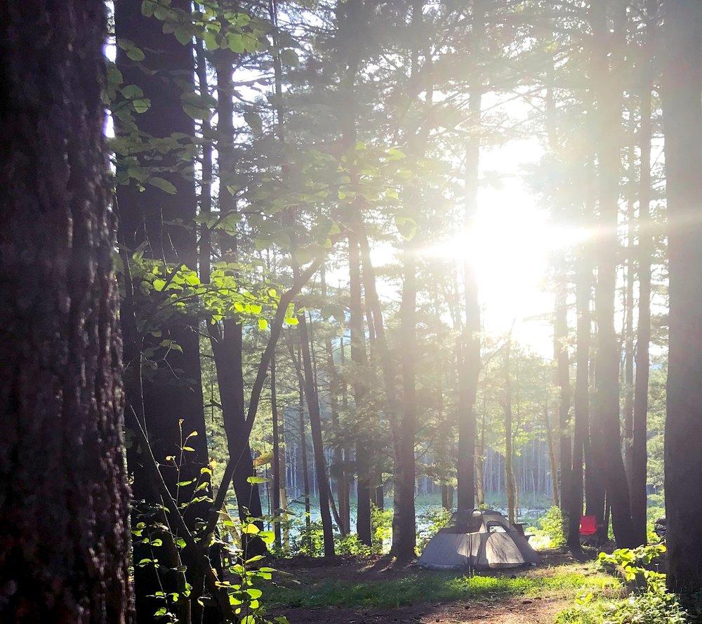 Tent in woods.jpg