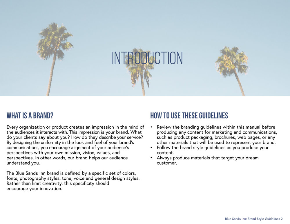 B.S Brand Style Guidelines2.jpg