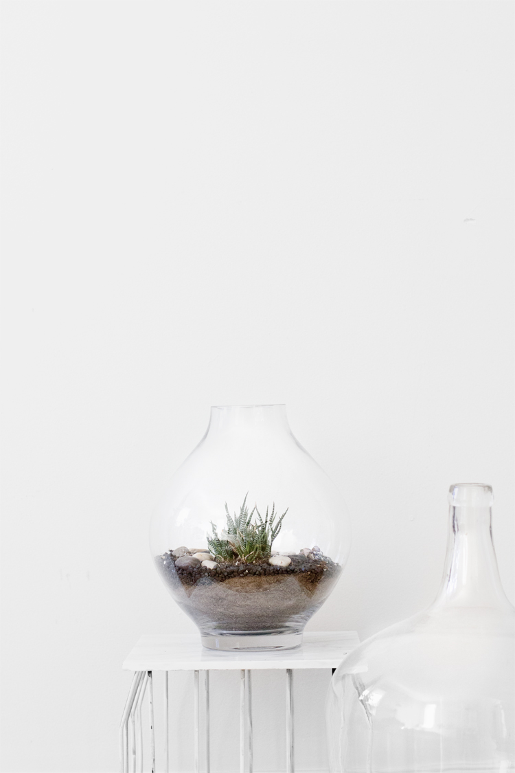 Veda House | Product Styling for Veda House Blog