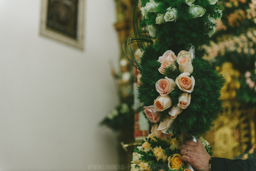 Rosas-peq-242.jpg