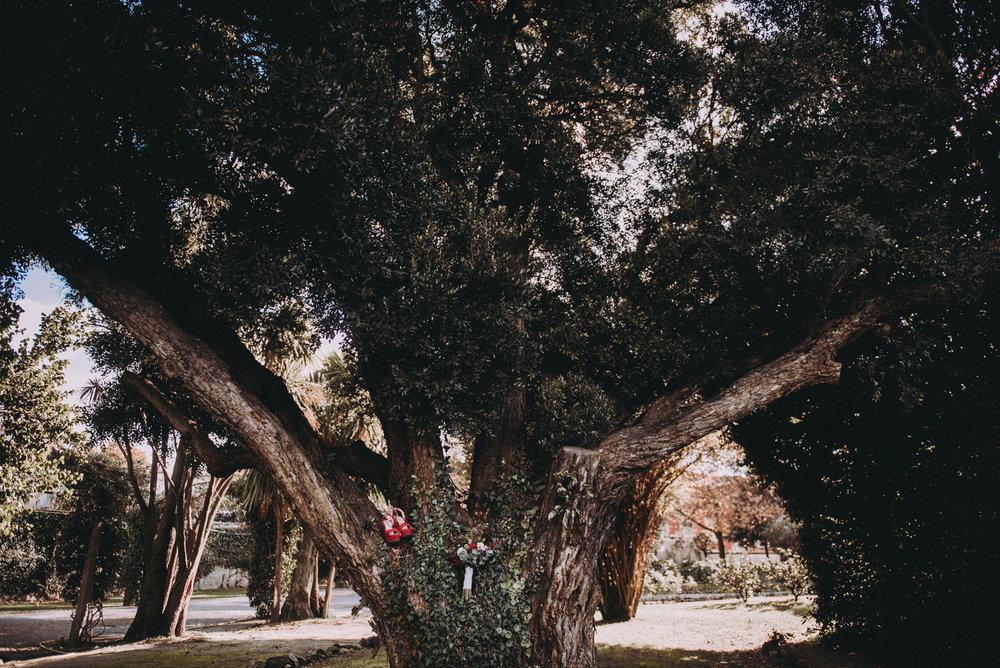 kikiebruno-0035.jpg
