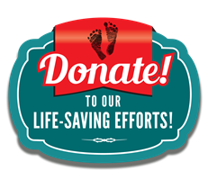 Click Here to Make Donation Online