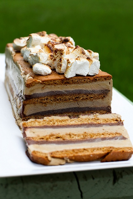 S'mores Ice Cream Cake // photo cred: annie's eats