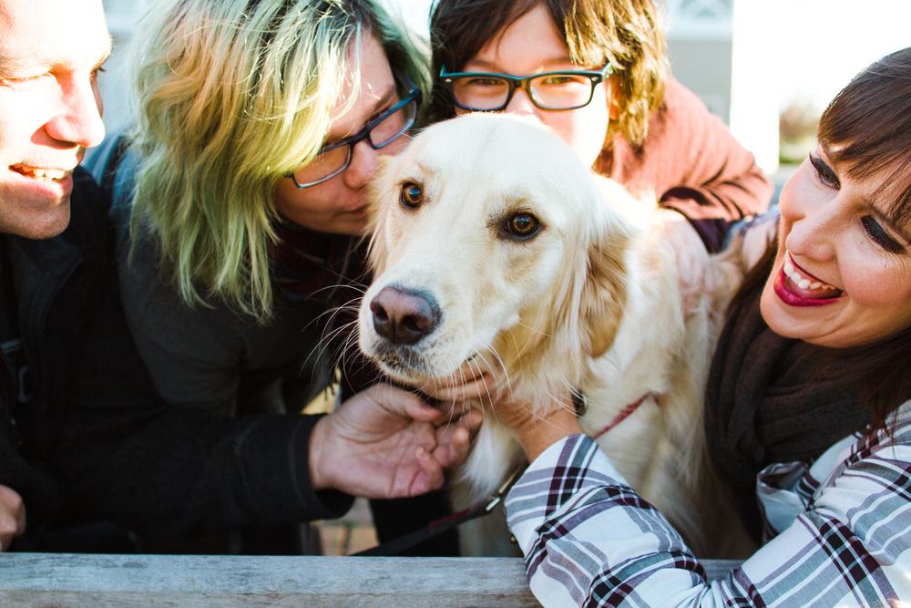 Family loving a golden retriever dog