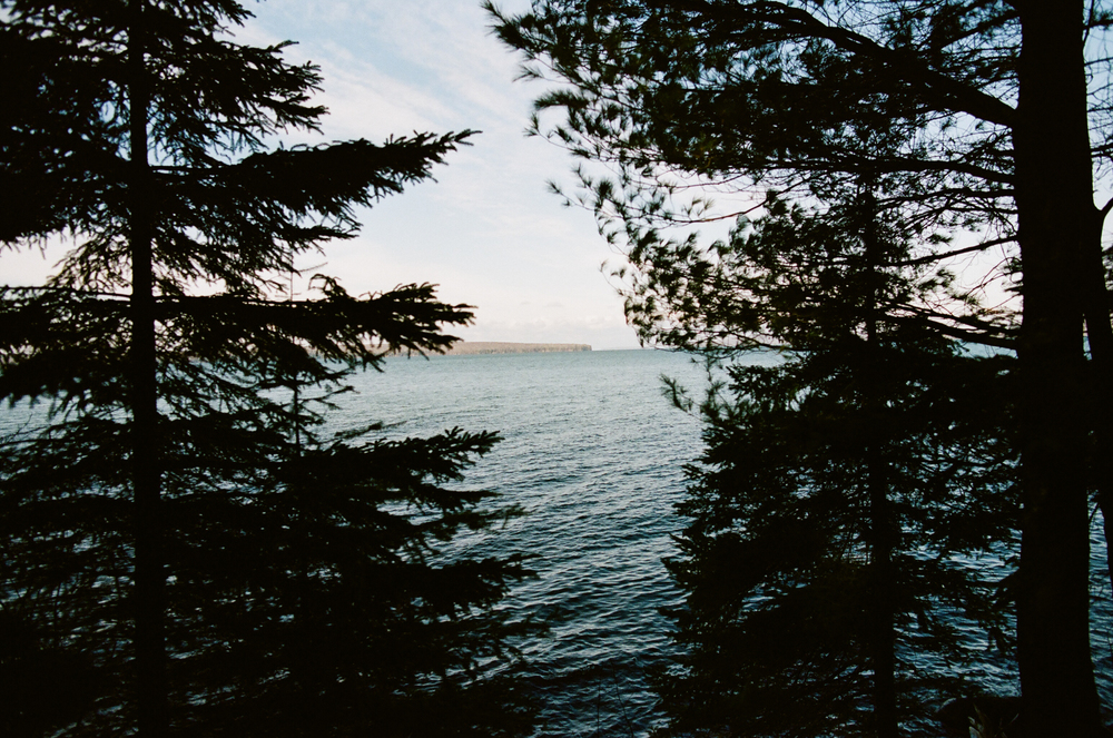 View of Lake Superior through the trees