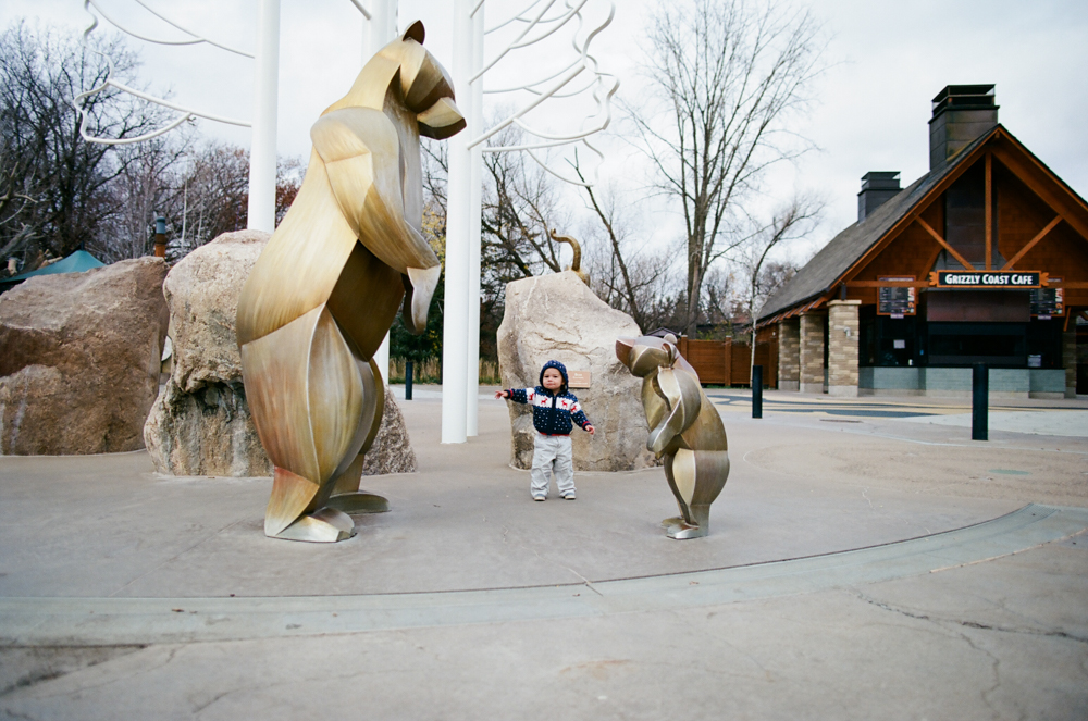 Child standing with grizzly bear statues at the Minnesota Zoo