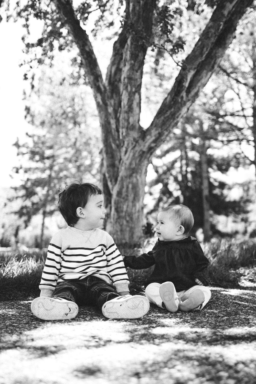 Minneapolis fall family portraits