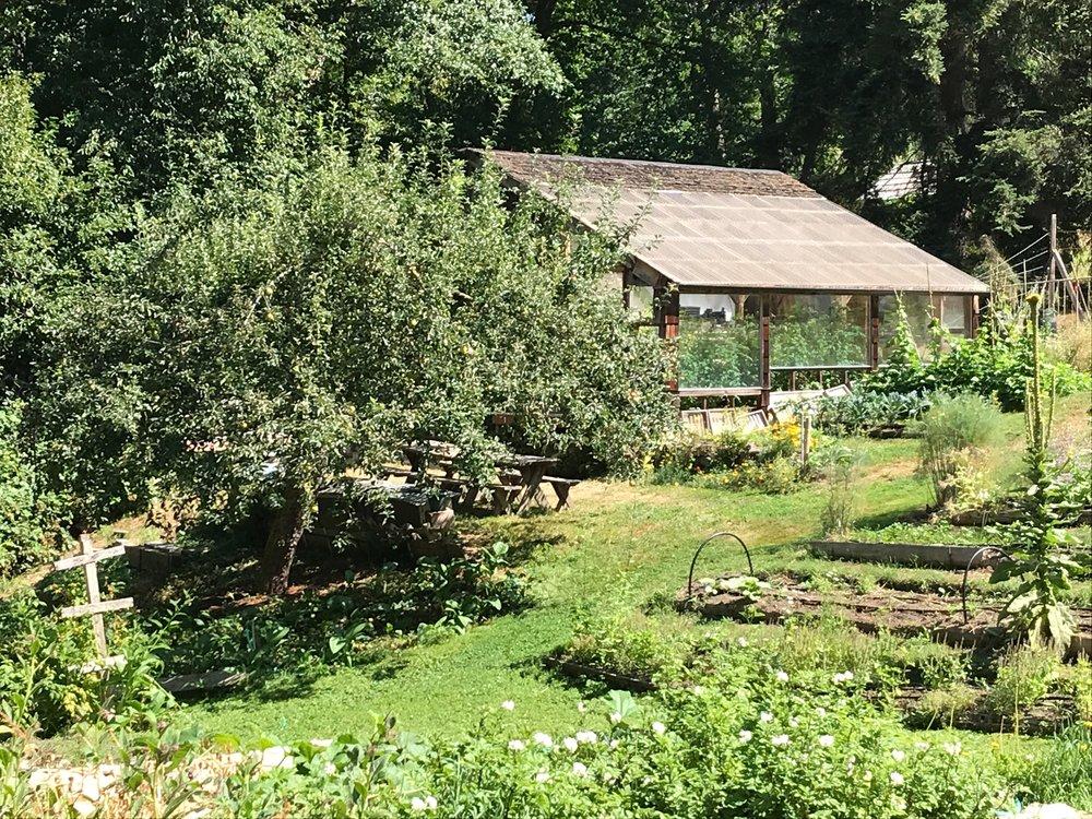 9 garden.jpg