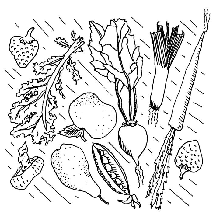 veggiesfruits.png