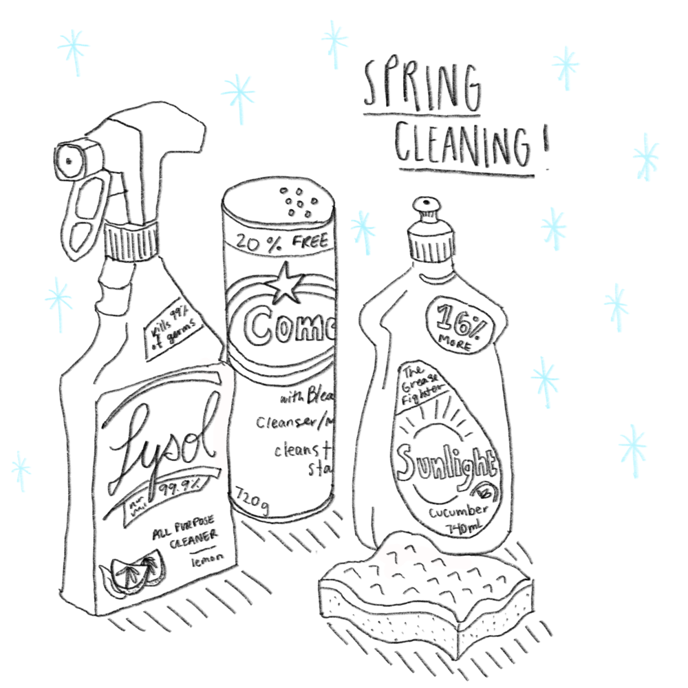 Spring_cleaning.png
