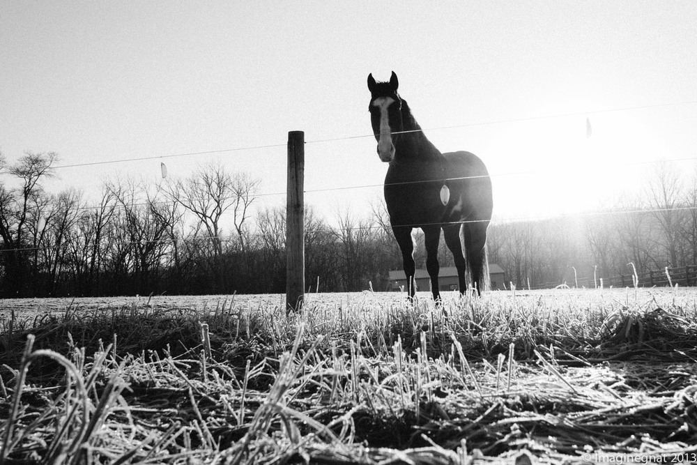 Early season frosty bike ride with my EM5 and my Panny 14mm f2.5