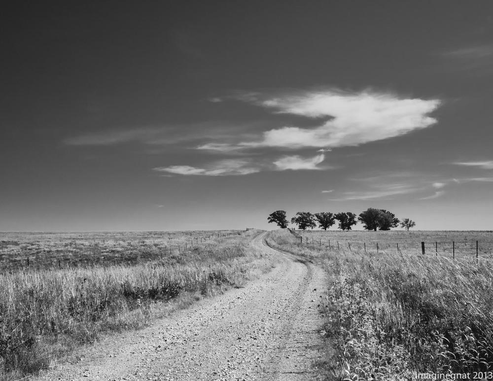 Coin Creek Road - Flint Hills, KS - OMD EM1 with Oly 75mm f1.8