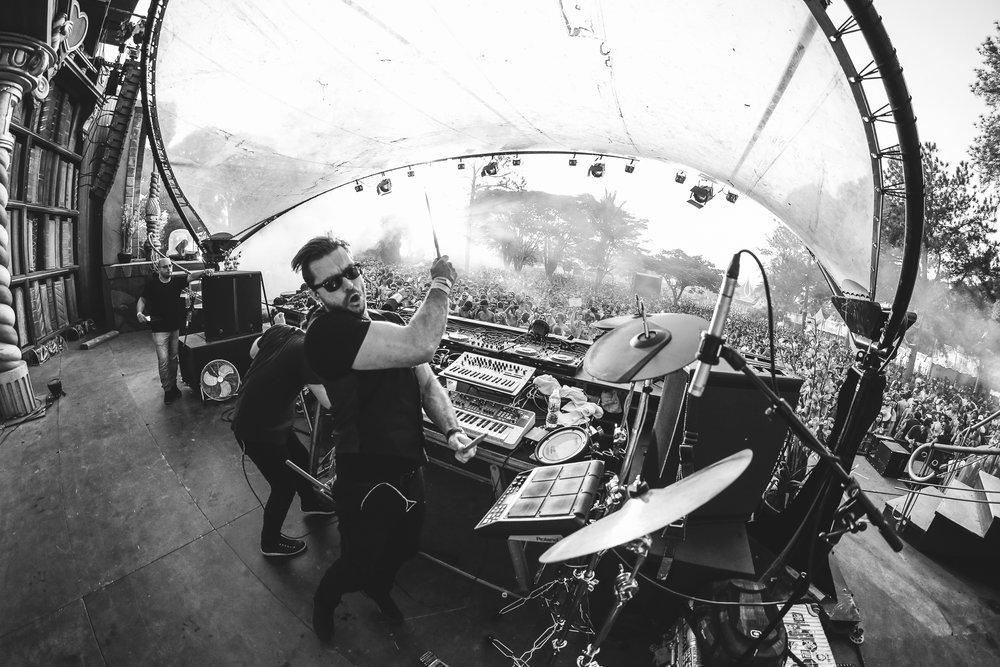Elekfantz live at Tomorrowland 3.jpg