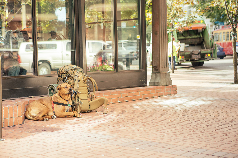 Portland_People-HPstudios-Photography_0002.jpg