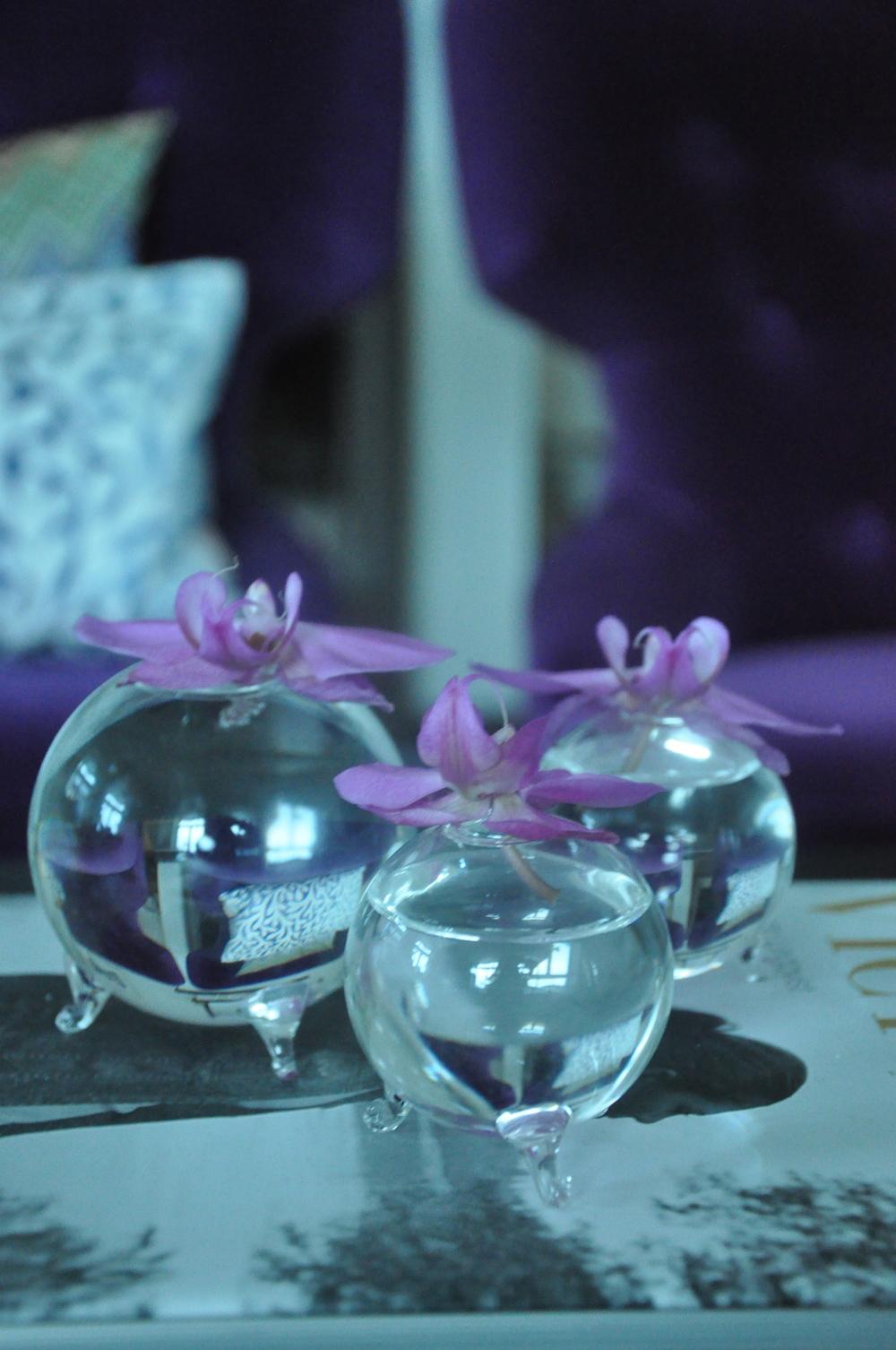 Orchidéblommor passar bra i de trebenta glasvaserna från Wikholmform   Foto:  Palatsliv