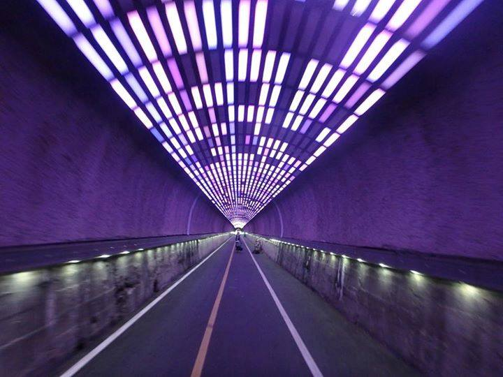 bicycle art tunnel.jpg