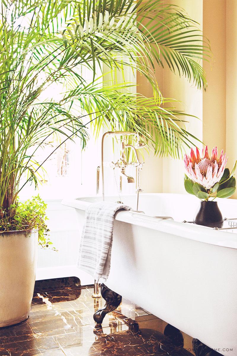 Interior Design Inspiration : Betsy Morgan, New York