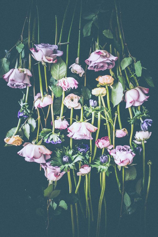måndags blommor (1 av 2).jpg