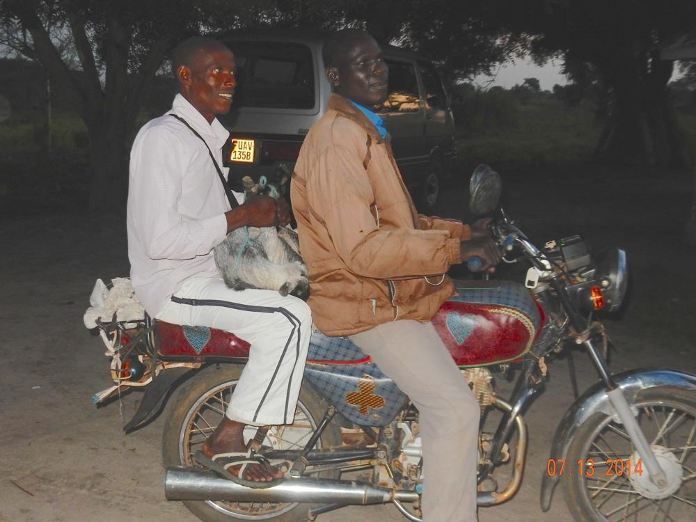 goat on motorcycle.jpg