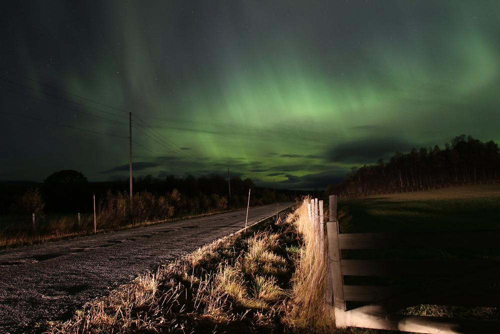 Vangrøftdalsveien. Foto: A. Nyaas