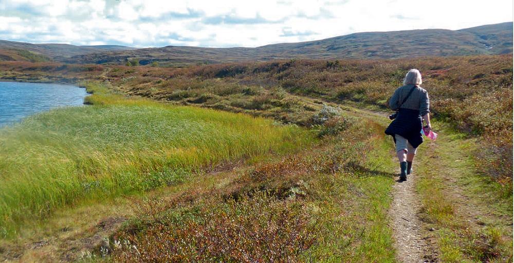 Utkastet til besøksstrategi for Forollhogna nasjonalpark med tilliggende landskapsvernområder legges nå ut til bred høring for kommentarer og innspill. Høringsfrist er 22. januar 2016. Foto: Berit Siksjø