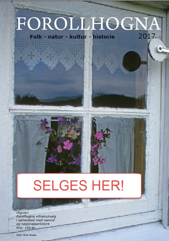 I løpet av neste uke vil årets utgave av Forollhogna-magasinet være til salgs i butikker i samtlige Hogna-kommuner.