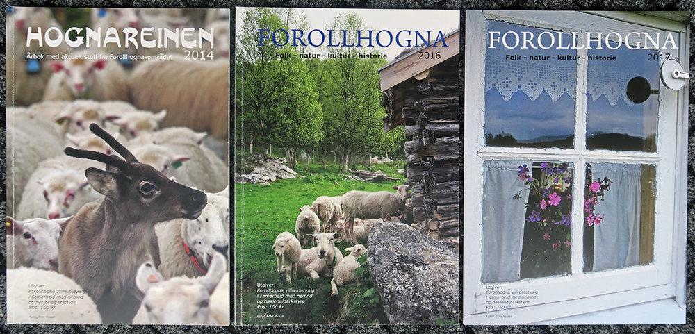 """Årets villreinjakt er over. Er det samme tilfellet med bladproduksjonen? Blir """"Forollhogna 2017"""" den siste utgaven? Foto: Arne Nyaas"""