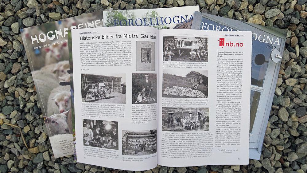 Åtte personer har så langt svart på spørsmålene som vi stiller om Forollhogna-bladet Si din mening, du også!. Foto: Arne Nyaas