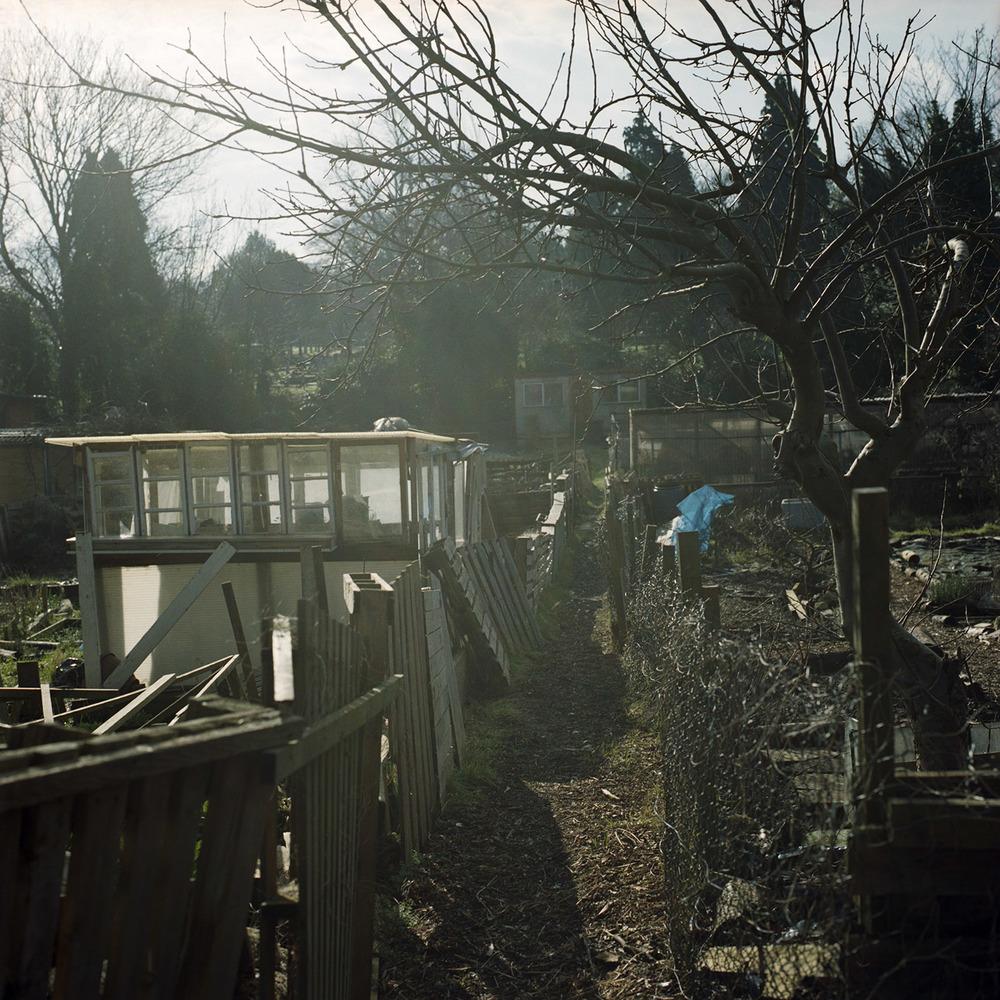 _Garden Project